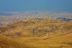 Wind Farm Altamont Pass