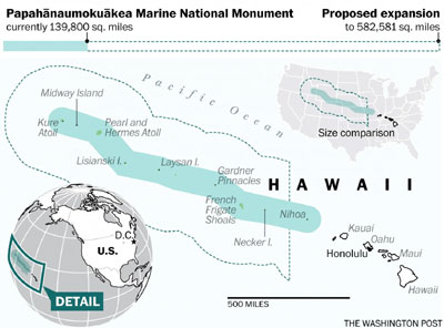 Obama expands protected waters off Hawaii, creating world's largest reserve