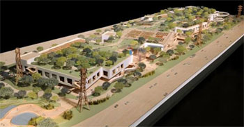Facebook Green Roof