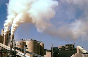 WWF Coal