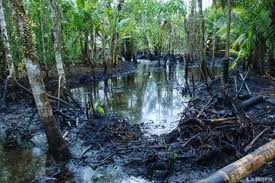Chevron oil pollution Amazon
