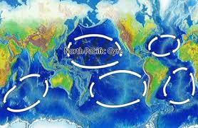 Pacific Gyre Dead Zones