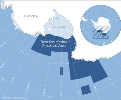 World Comes Together To Protect Antarctic Wildlife