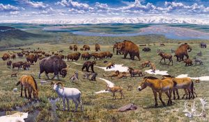 Wildlife Mammoths in Arctic