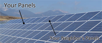 Trade Association Forms to Boost Community Solar in US