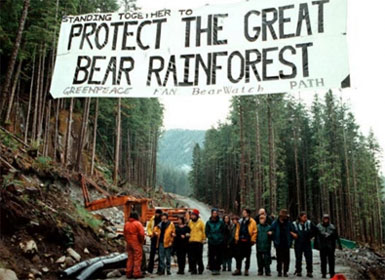 Landmark Agreement Protects Canada's Great Bear Rainforest Forever