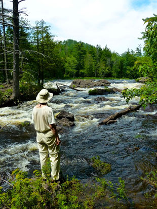 Great News!! President Obama Keeps Maine WILD