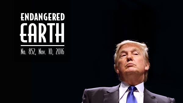 Trump-Endangered-Earth.jpg