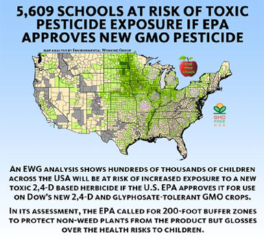 It's Official! Agent Orange GMO Enters Food Supply