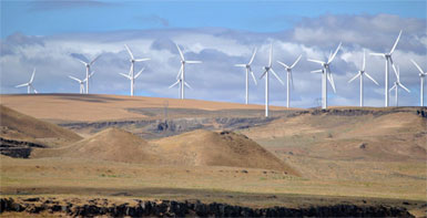 Hidalgo-Wind-Farm.jpg