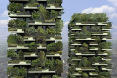 A Vertical Forest Rises in Milan