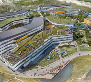 google-green-roof.jpg
