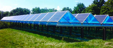 solar-garden.jpg